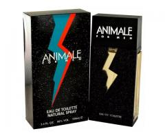 Animale Masculino Eau de Toilette 100 ml